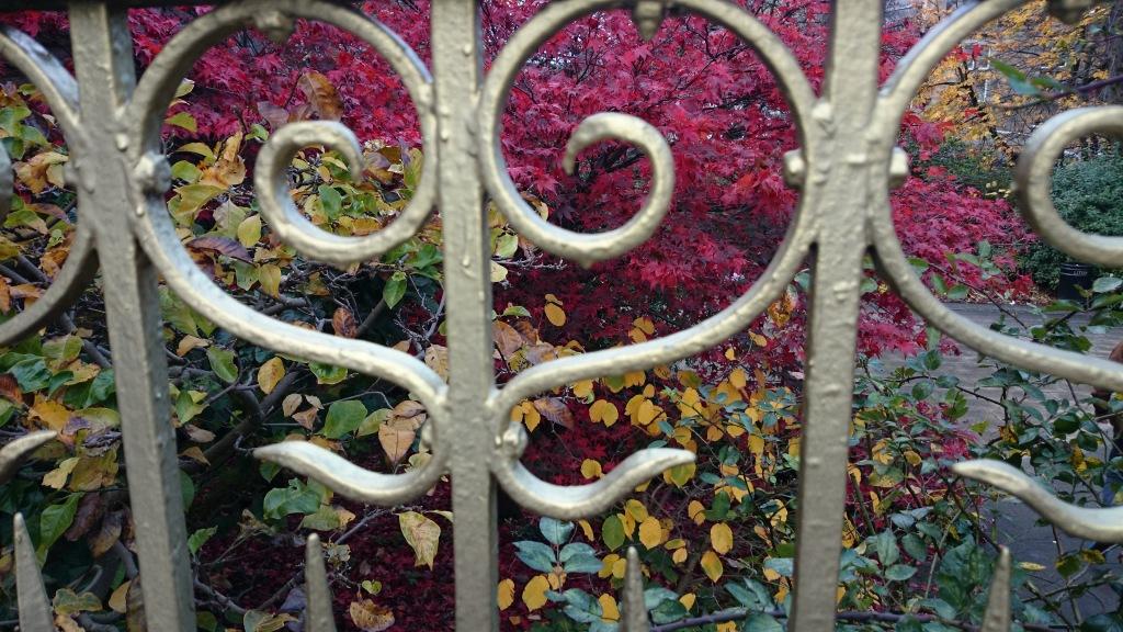 Autumn 3 November 2014